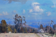 18127 View from Kinglake 20x30cms